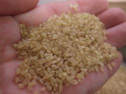 bulgar-wheat-small